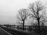 driving from Arkansas 1