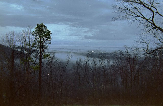 fog in the valley 1 (FG)