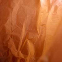 20160123 1610 red plastic bag ©JamesECockroft 3067