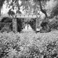 20160821 0934 Random FW Botanical Garden Random ©JamesECockroft 0208 2