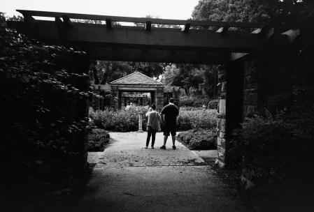 20160821 0957 Random FW Botanical Garden Random ©JamesECockroft 0265