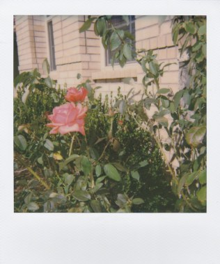 Impossible Project (01/2017), Irving, TX 2017
