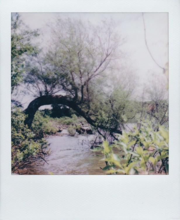 grapevine-lake-underwater256