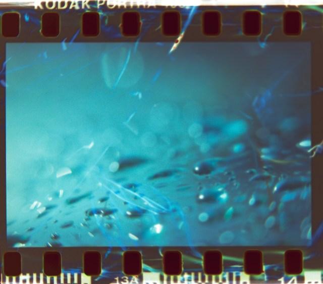 Lens Tests16©JamesECockroft 20150426 Raw Therapee 2 RAW black white corrections1