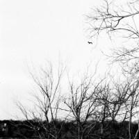 White Rock Lake Tri X35©JamesECockroft 20130405