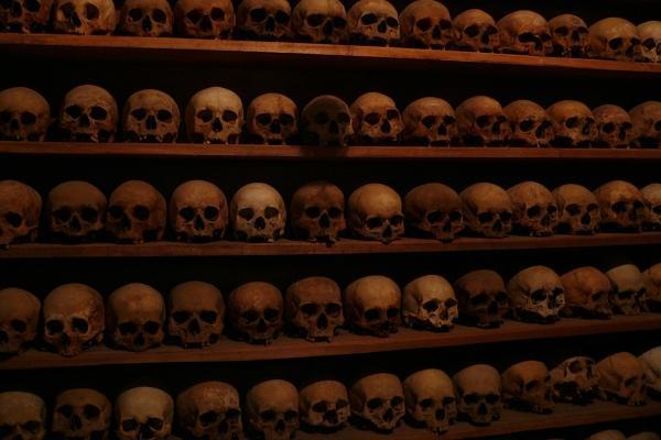 skull-shelves