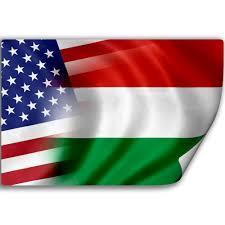 Hungarian American Flag