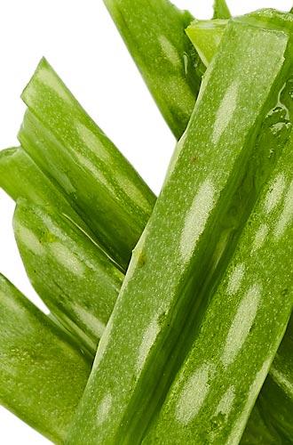 Aloe Vera Ingredient