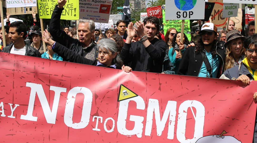 USDA to Evaluate GMOs