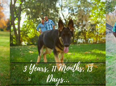 3 Years, 11 Months, & 13 Days..