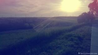 delta-bike-tour-sunset