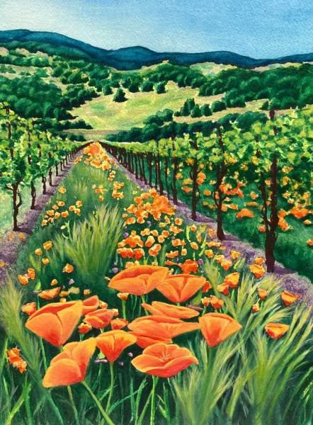 California poppies in a vineyard watercolor painting by jamie wilke
