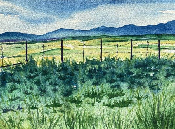 Wyoming - Original 9x12 inch watercolor by Color Artist Jamie Wilke Fine Art