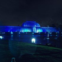 Kew Gardens Christmas Light Spectacular 2015