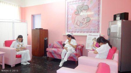 Alicia Sanchez Vecorena - Breastfeeding: a commitment of love