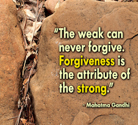 "Does saying ""I'm sorry"" make you weak? The Big Forgiveness Post…"