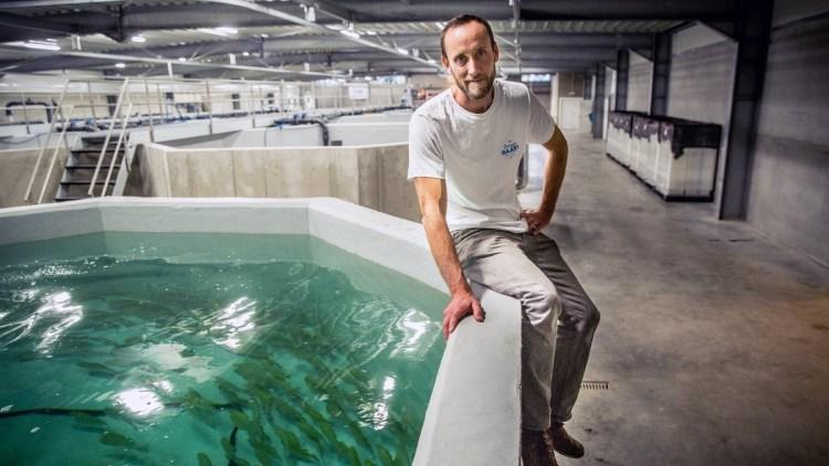 Ecologisch vis kweken