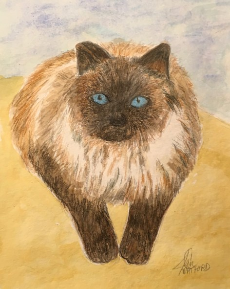 Marley-my cat-watercolor