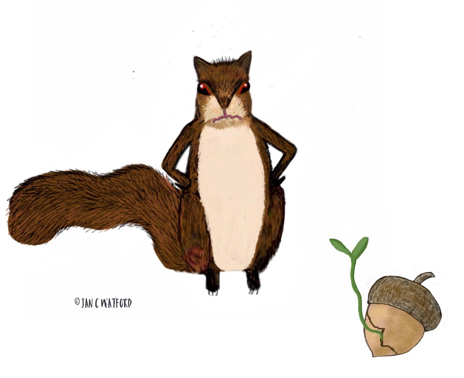 Squirrel Acorn Grow Illustration