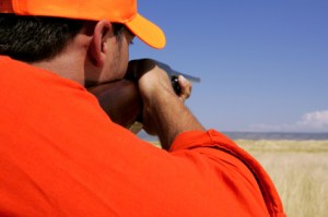 texas dove hunting dates-https://www.jandnfeedandseed.com