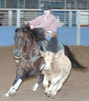 high school rodeo-https://www.jandnfeedandseed.com