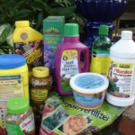 choosing the right fertilizer-https://www.jandnfeedandseed.com