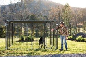 Tarter Elite Dog Kennel