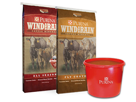 Purina Cattle Feed