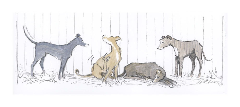 Bored Lurchers