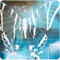 Altid sommerfuglen