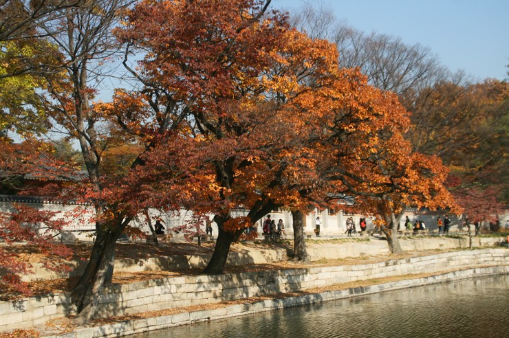 riverbanks gyeongbokgung
