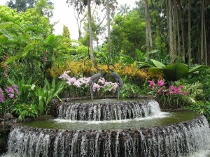 Waterfall at Orchid Gardens entrance