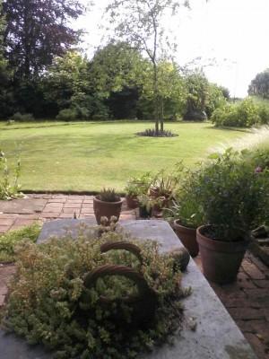 Lawn - Hilary's
