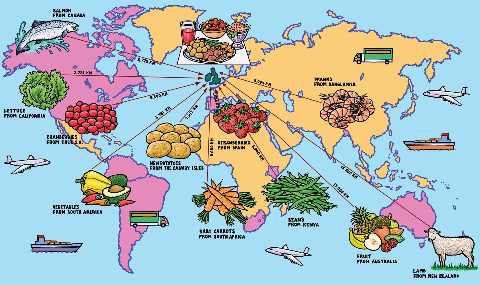 World Food Map