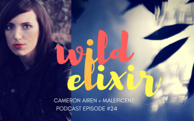 Episode #24 :: Maleficent + Cameron Airen