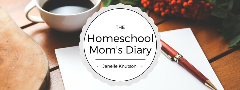 Homeschool Mom's Diary (1)