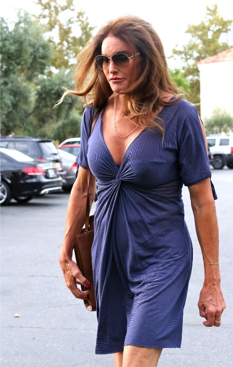 """05422d946a4 www.janetcharltonshollywood.com Want more details  Visit my bio and click  on link! » Blog Archive » CAITLYN JENNER  """"IF YOU LOOK LIKE A MAN IN A DRESS"""