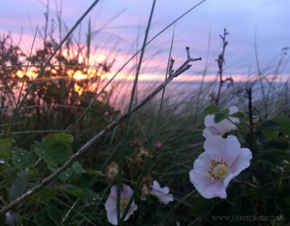 Port Townsend Sunset