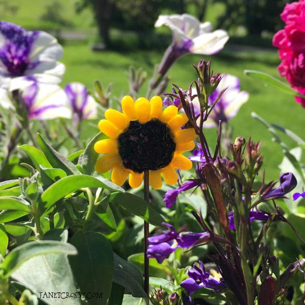 Flower Jewel Plant Stake by Janet Crosby