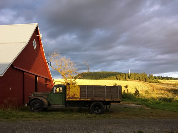 Big Barn and Old Truck by Janet Crosby