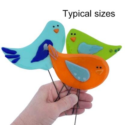 Flock Sizes