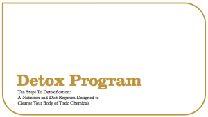 the Detox Program eBook jacket cover