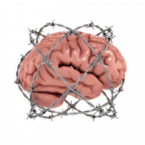 a fake brain inside a wire cage