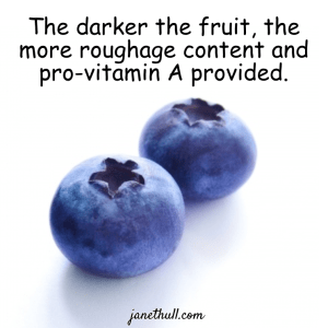 2 blueberries in a meme to eat dark fruits