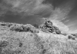 In Search of Eadweard Muybridge