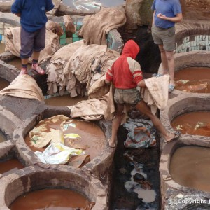 Tannery, Morocco