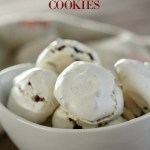 Meringue Chocolate Chip Teaser Cookies