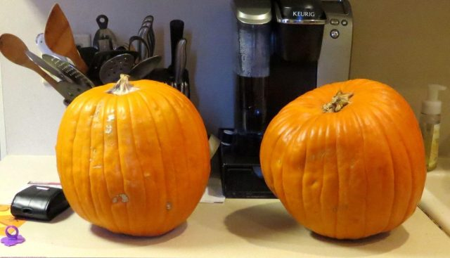 Lowes Carving Pumpkins