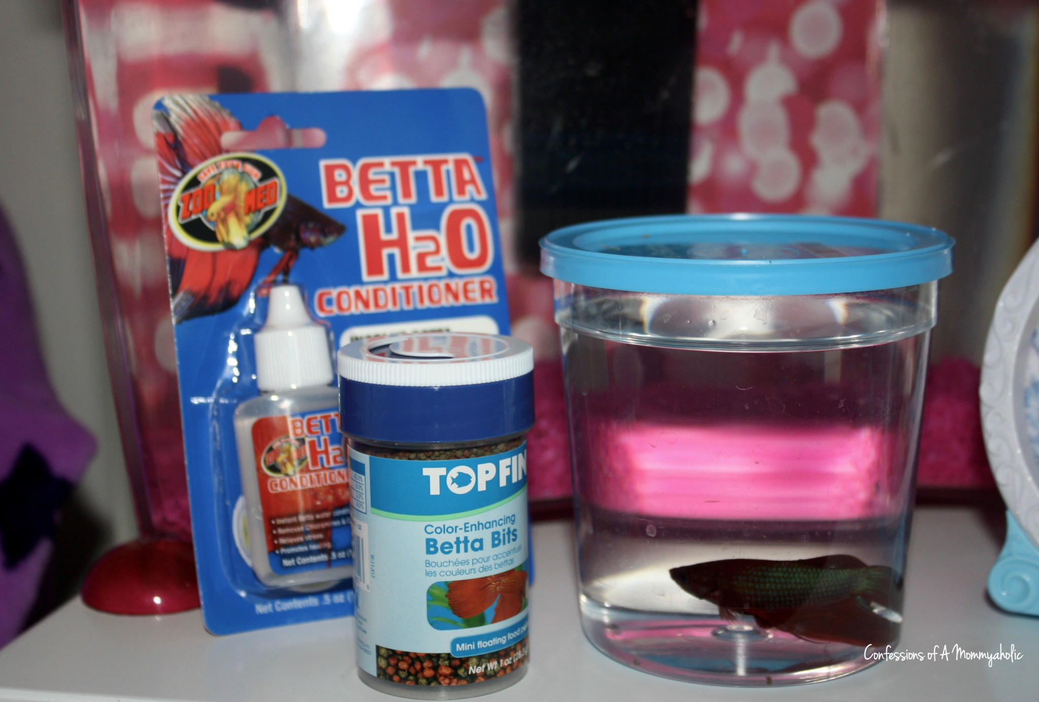 new pet betta fish, This Mom's Confessions