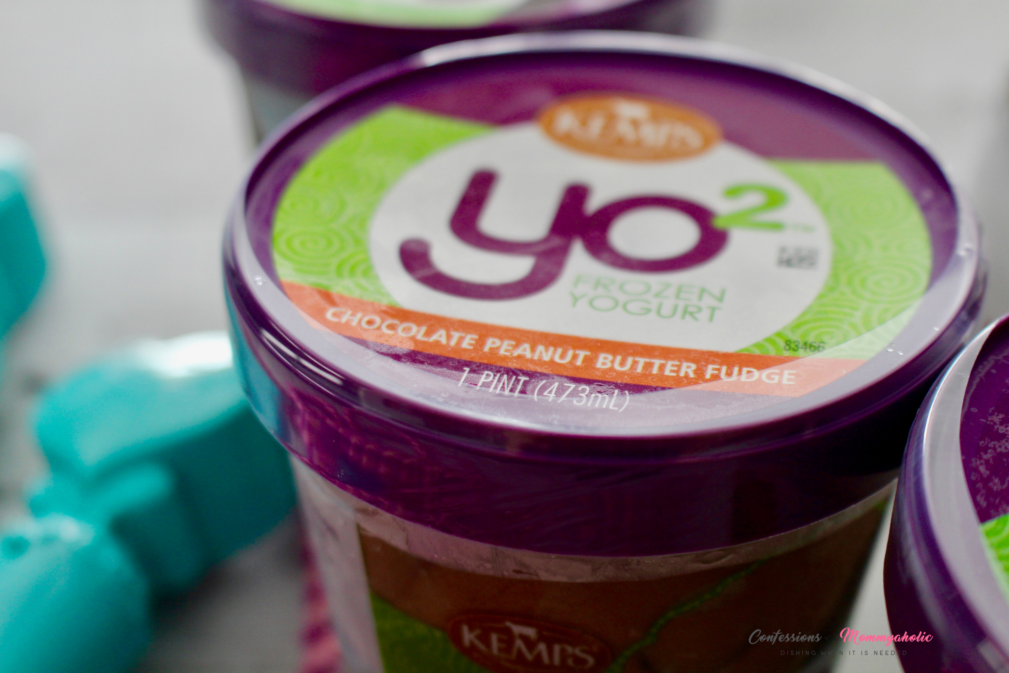 Kemps YO2 Chocolate Peanut Butter Fudge Frozen Yogurt